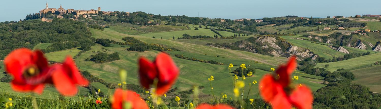 Blick auf Pienza im Orcia Tal, Unesco Welterbe