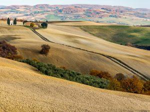eine Wanderreise in einer Bilderbuchlandschaft mit Weinverkostungen in die suedliche Toskana, Provinz von Siena