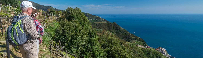 Weinwanderung in den Cinque Terre über Manarola