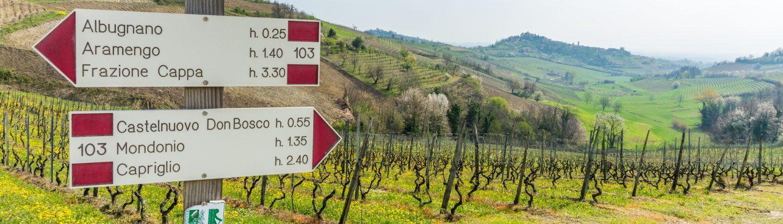 Ein Wanderweg im Monferrato in der Nähe von Vezzolano