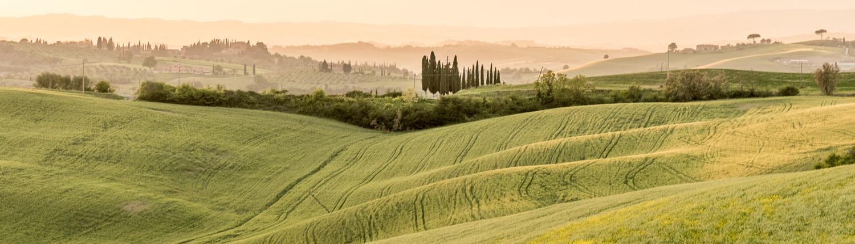 malerische Hügel bei Asciano sind das Ziel unserer Wanderungen in der Toskana