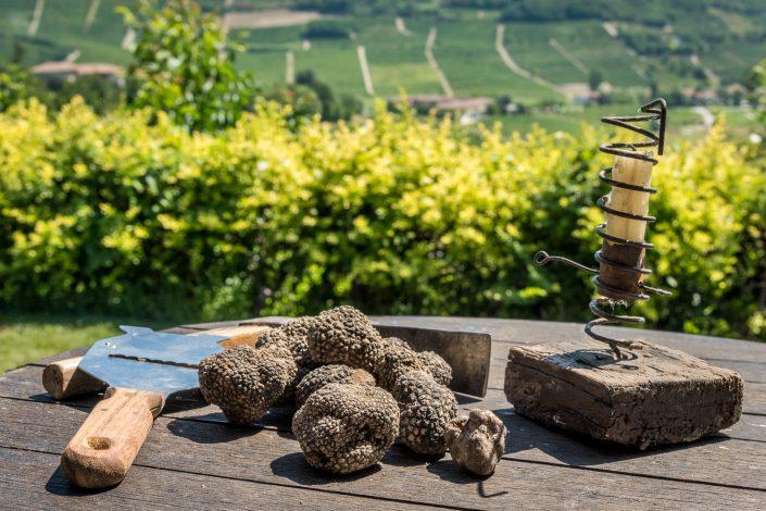 Trüffelsuche im Piemont, schwarzer Sommertrüffel