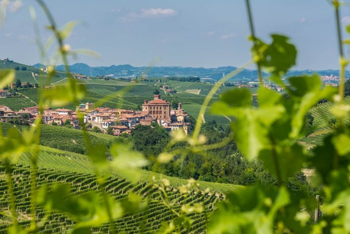 Barolo, Weinstadt im Piemont umgeben von den Weinbergen der Langhe