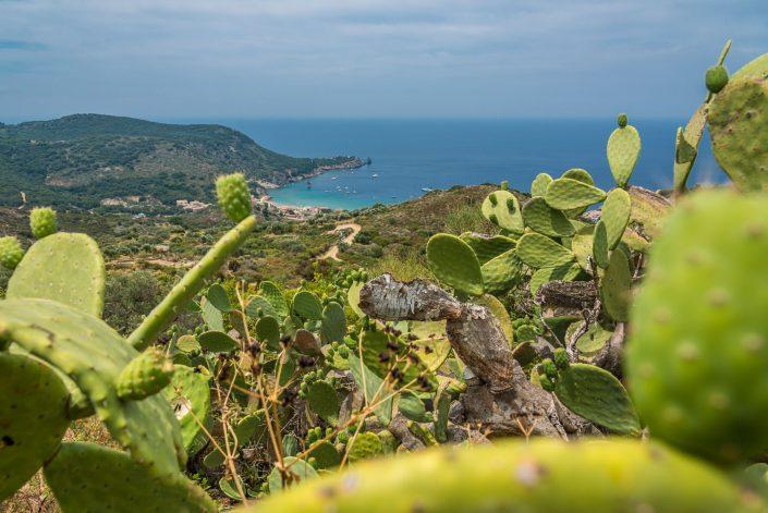 Insel Giglio in der Toskana