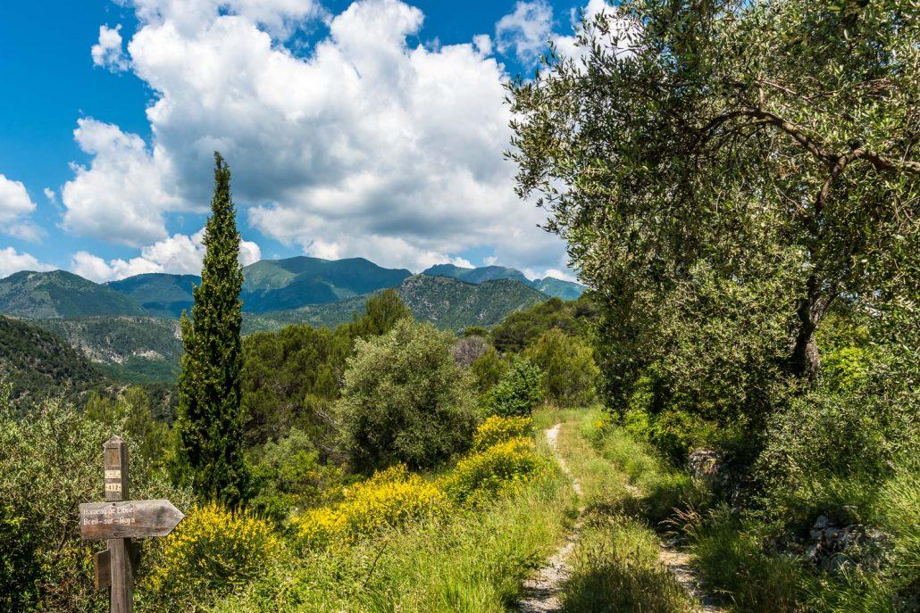 Wandern mit Ausblick zwischen Frankreich und Italien