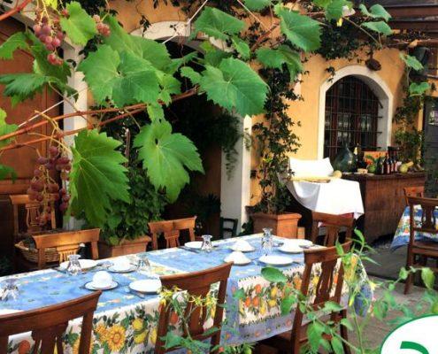 Weinverkostung im biologischen Weingut Bio Vio bei Albenga