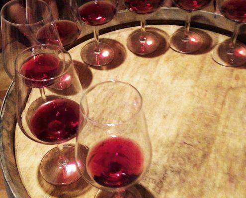 Gourmetreise in Venetien: Weinverkostung in der Villa Calicantus, biodynamisches Weingut