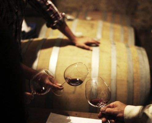 Veneto, Weinreise: feine Rotweine aus biologischem Anbau am Gardasee