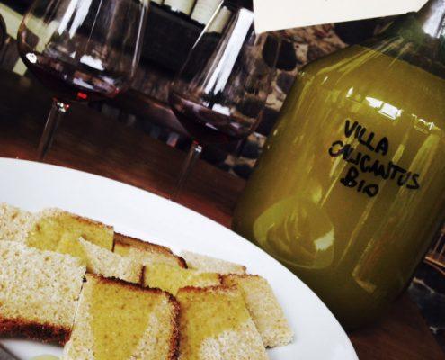 Feines Olivenöl von der Villa Calicantus bei Bardolino, biologische Landwirtschaft am Gardasee.