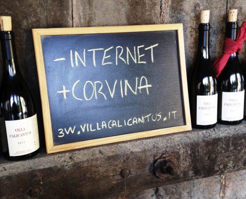 Veneto, Weinverkostung von biodynamischem Wein bei Villa Calicantus