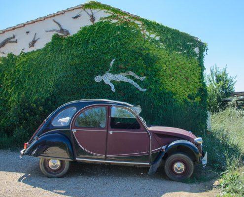 Im Weingut Il Cerchio in der Toskana