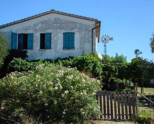 Das biologische Weingut Il Cerchio bei Capalbio