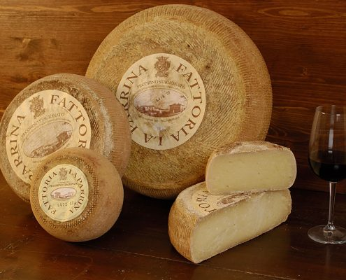 Pecorino-Käse vom Landgut La Parrina