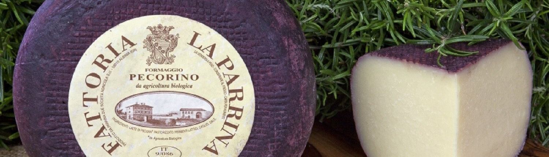 Pecorino-Käse von La Parrina