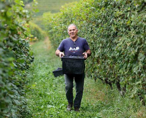 renato corino, ein Winzer im Barolo-Gebiet