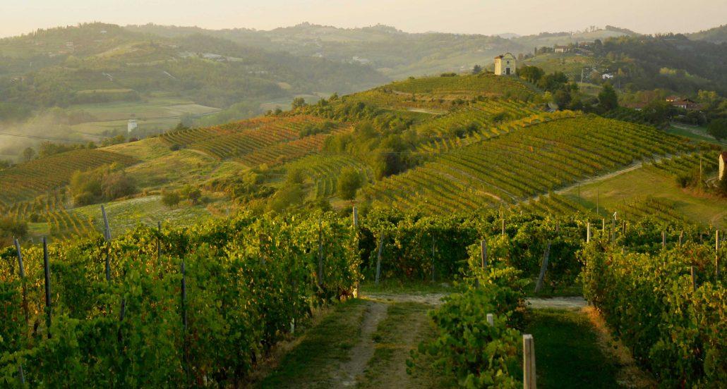 Landschaft im Monferrato