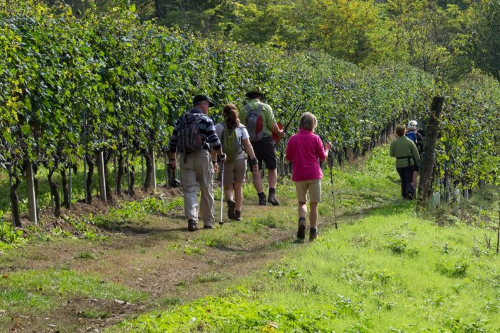 Wandern im Piemont, das Monferrato-Gebiet
