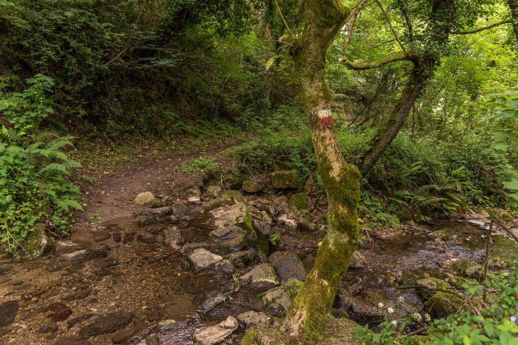 Ein wildromantischer Wanderweg