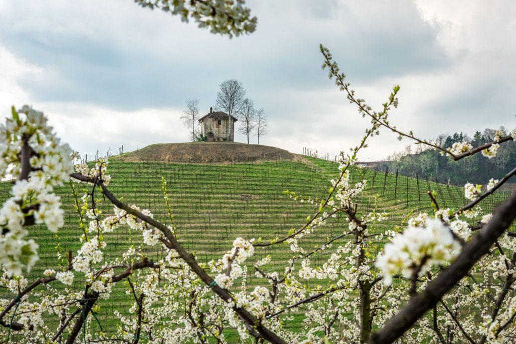 Wanderungen führen vorbei am Ciabot (ein Weinbergshaus) im Roero