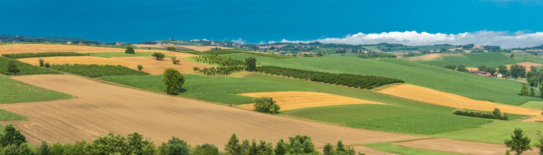 Wanderungen durch die malerische Landschaft des Monferrato im Piemont