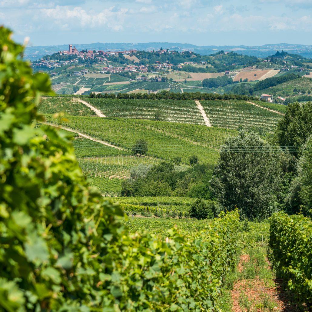 Wanderung beim Bricco Lù im Monferrato im Piemont