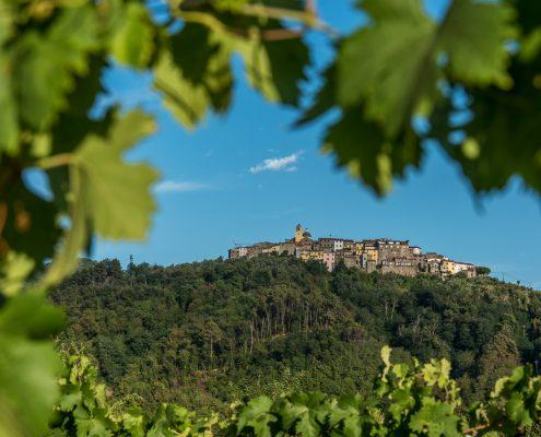 Landschaft in der Lunigiana, Wein und malerische Dörfer