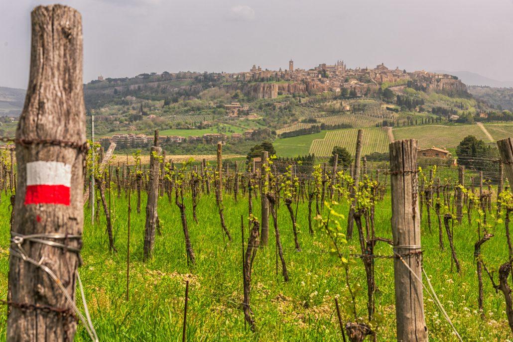 Ausblick nach Orvieto