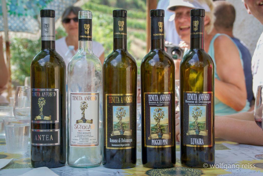 Weinverkostung bei Tenuta Anfosso
