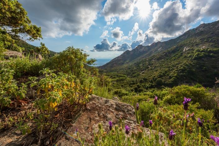 Das Tal von Pomonte