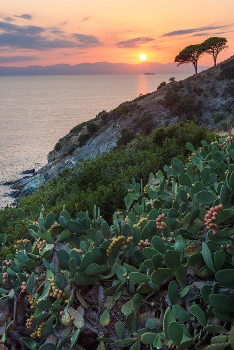 Sonnenuntergang auf Elba