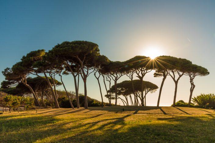 Sonnenuntergang im Golf von Baratti an der Maremma