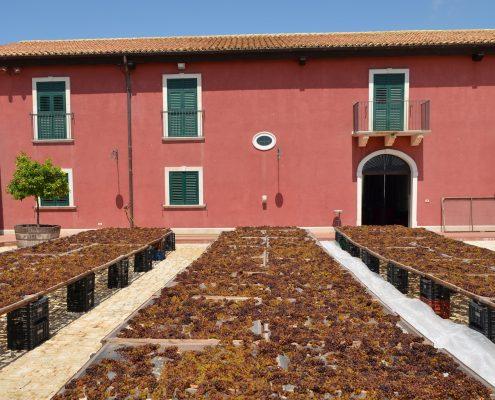 Marabino Wein Noto Sizilien
