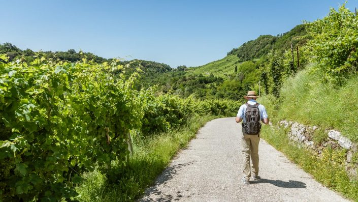 Wandern im Proseccoland